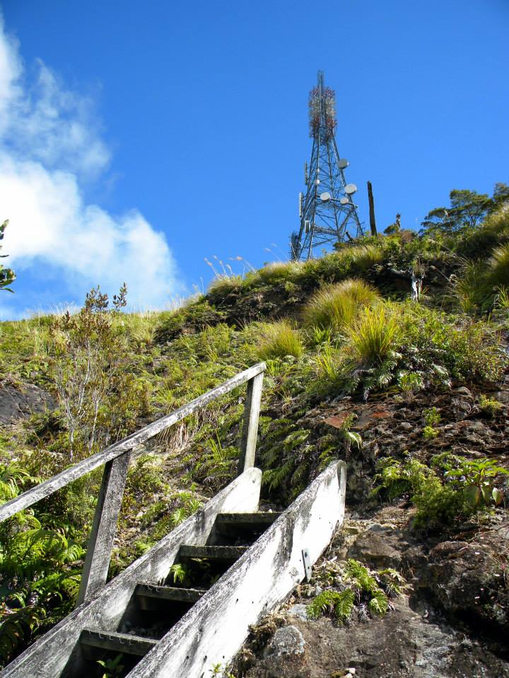 mt tearoha summit track